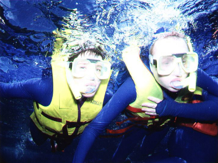 Snorkelling on the Barrier Reef